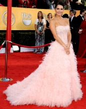 Angie Harmon: She definately left a lasting impression in this pink feathered Monique Lhullier. {Photo: Steve Granitz/WireImage.com}