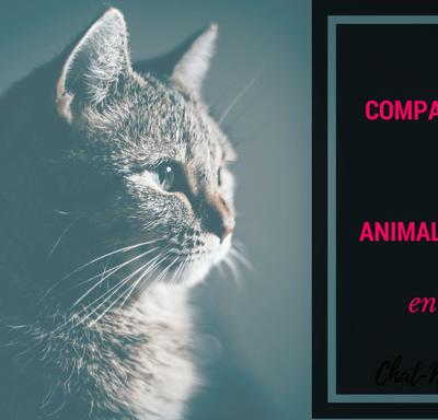 comparatif des animaleries en ligne wanimo zooplus