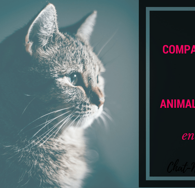 Comparatif des animaleries