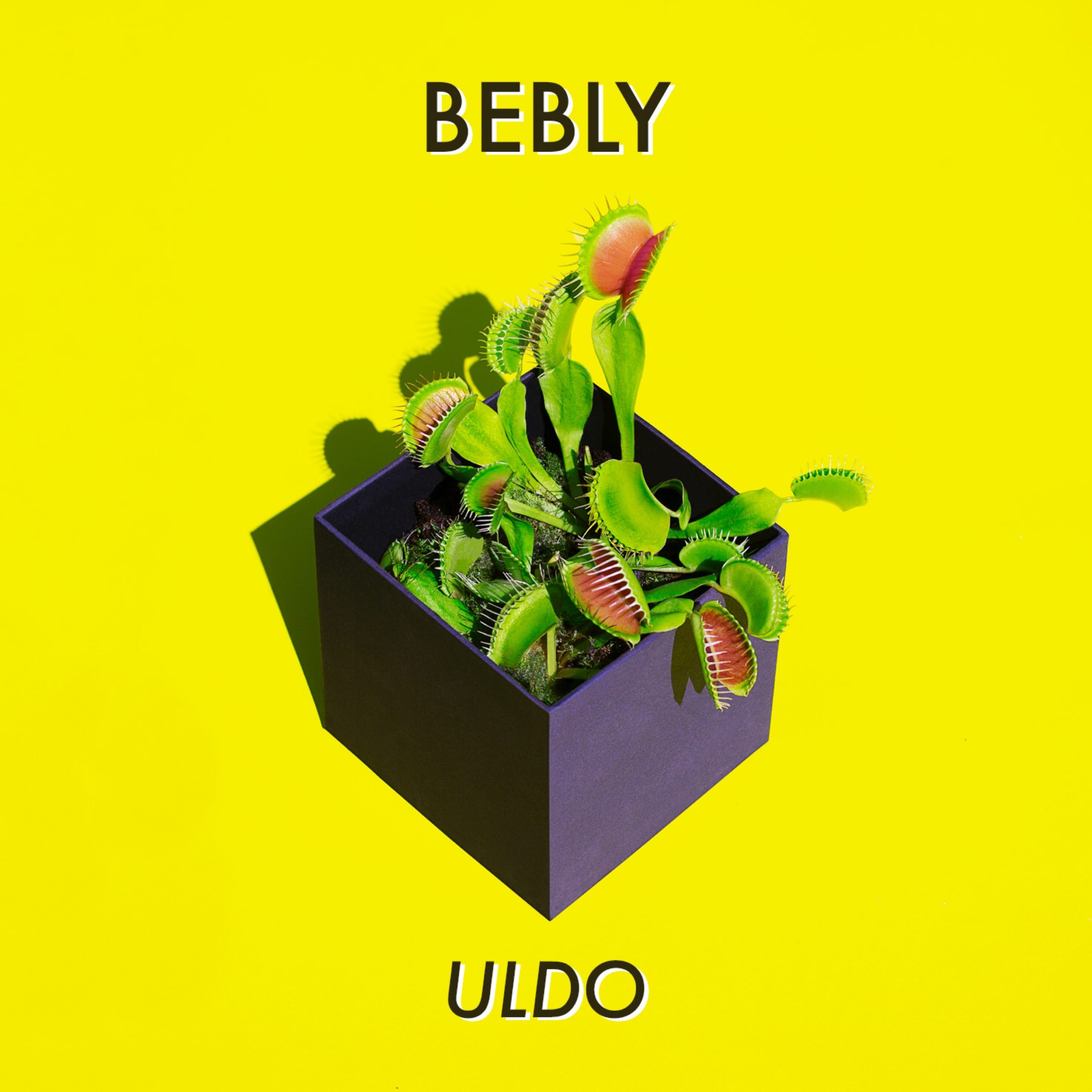 """Résultat de recherche d'images pour """"uldo bebly ep"""""""