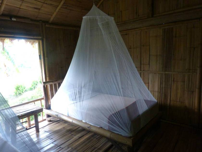 bamboo-nest-de-chiang-3_watermarked_image_1024.jpg