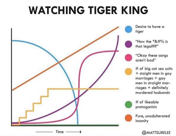 tigerkingchart