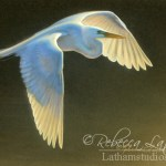 Morning Flight - Great Egret, Watercolor & 24kt gold 4in x 6in