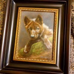 Framed Wolf Puppy