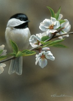 "Blossom Perch - Chickadee, 5"" x 7"", watercolor on board, ©Rebecca Latham - The Snowgoose Gallery The Art of the Miniature XXIII"