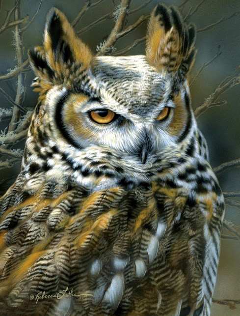 Focus - Great Horned Owl, 6x8, watercolor on board with sterling silver, Rebecca Latham
