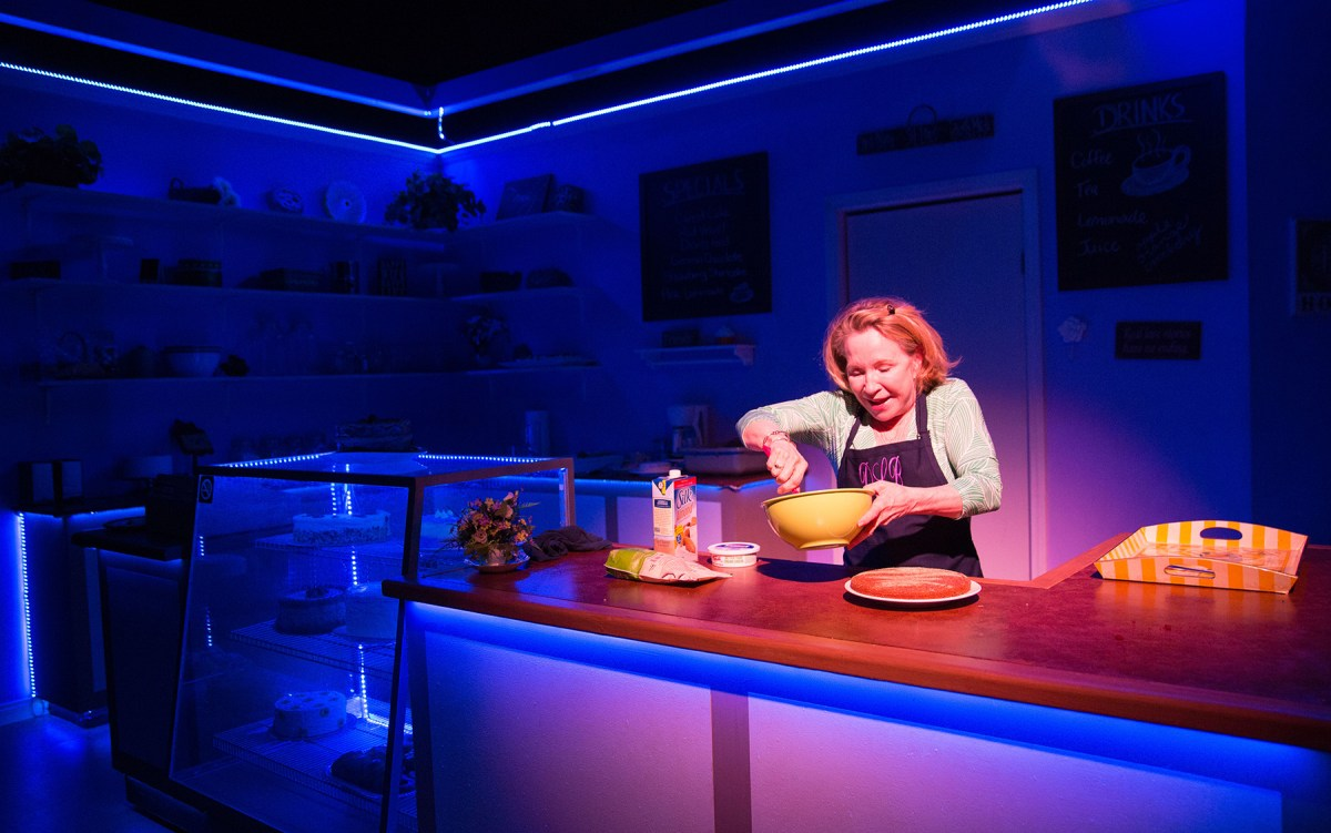 Echo Theater Company presents: The Cake @ Atwater Village Theatre in Los Angeles – Review