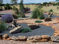 1000+ images about Yard on Pinterest | Utah, Succulents ...