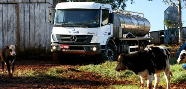 """Um die Milch frisch auf den Frühstückstisch oder zur Weiterverarbeitung zu bringen, fahren die rund 500 Trucks des Milch-Spediteurs """"Via Lácteos"""" täglich abgelegene Höfe an"""