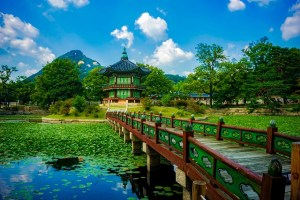 One Latina's adventure in Korea continues…Why Language & Etiquette are important
