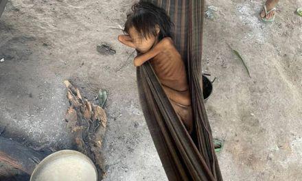 L'AMAZZONIA E GLI YANOMAMI SOTTO ASSEDIO