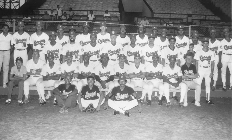 The 1988 Leones del Escogido of Santo Domingo were the D.R. national champions and Caribbean Series winners.