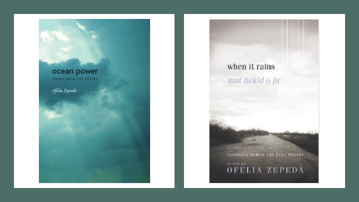 Book cover of Ocean Power showing blue ocean. Book cover of When it Rains showing a rural road in Arizona.