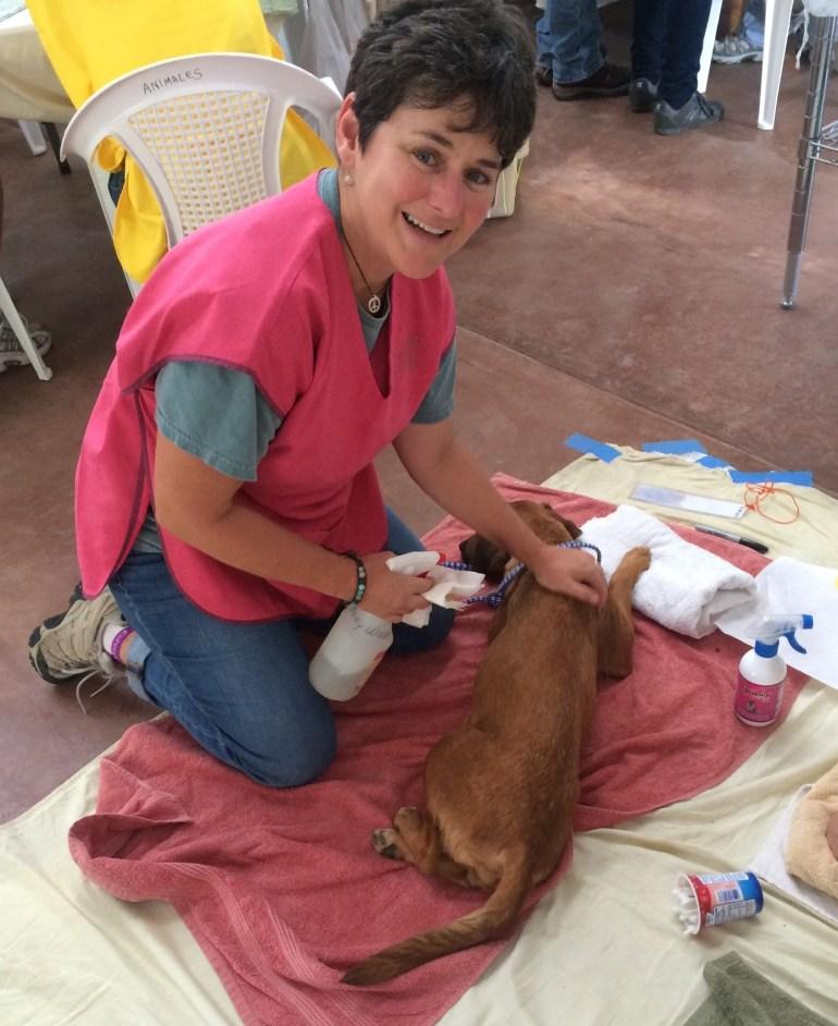 01f9d0eea090787d948b2591114179adbc1f410c40 Dogs and cats, cats and dogs! Pets The Expat Life