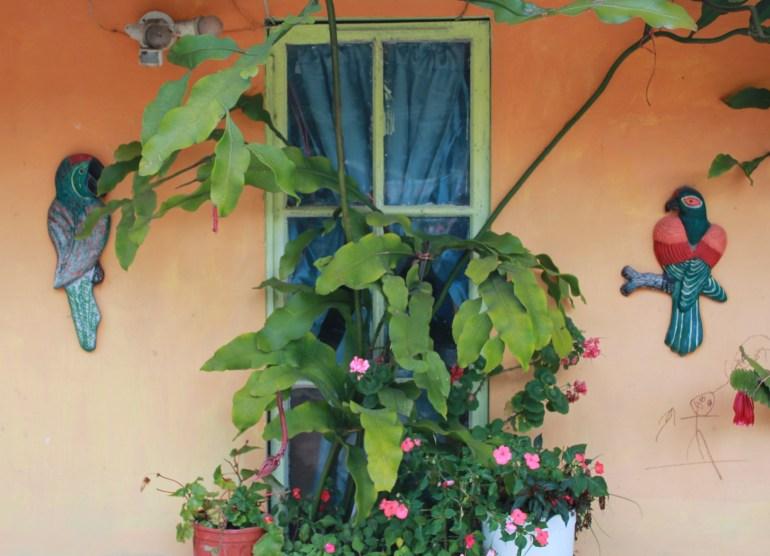 img_6766 Day Trippin' - Cerro Punta Panama The Expat Life