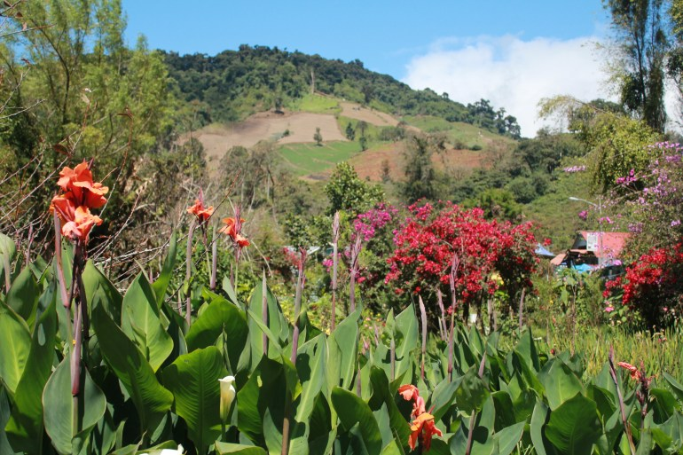 img_6769 Day Trippin' - Cerro Punta Panama The Expat Life