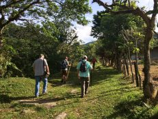img_1455-scaled Another Day, Another Adventure Hiking in Panama The Expat Life The Great Outdoors