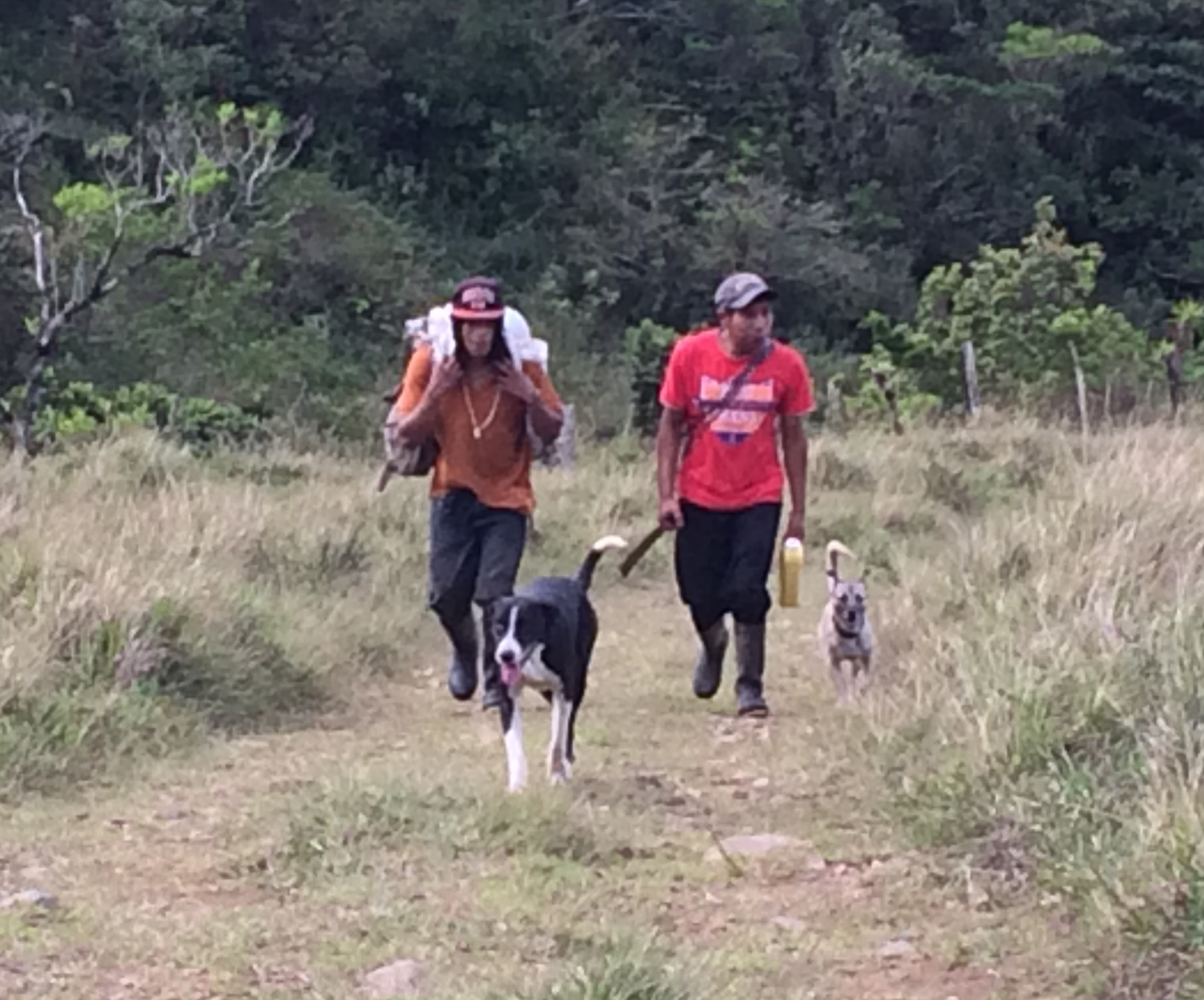 img_1468 Another Day, Another Adventure Hiking in Panama The Expat Life The Great Outdoors