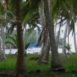 41-compania-anchored-in-the-san-blas-islands1 Return to the San Blas Islands Panama San Blas Islands