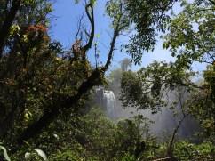 img_2006 Incredible Iguazú Falls Argentina