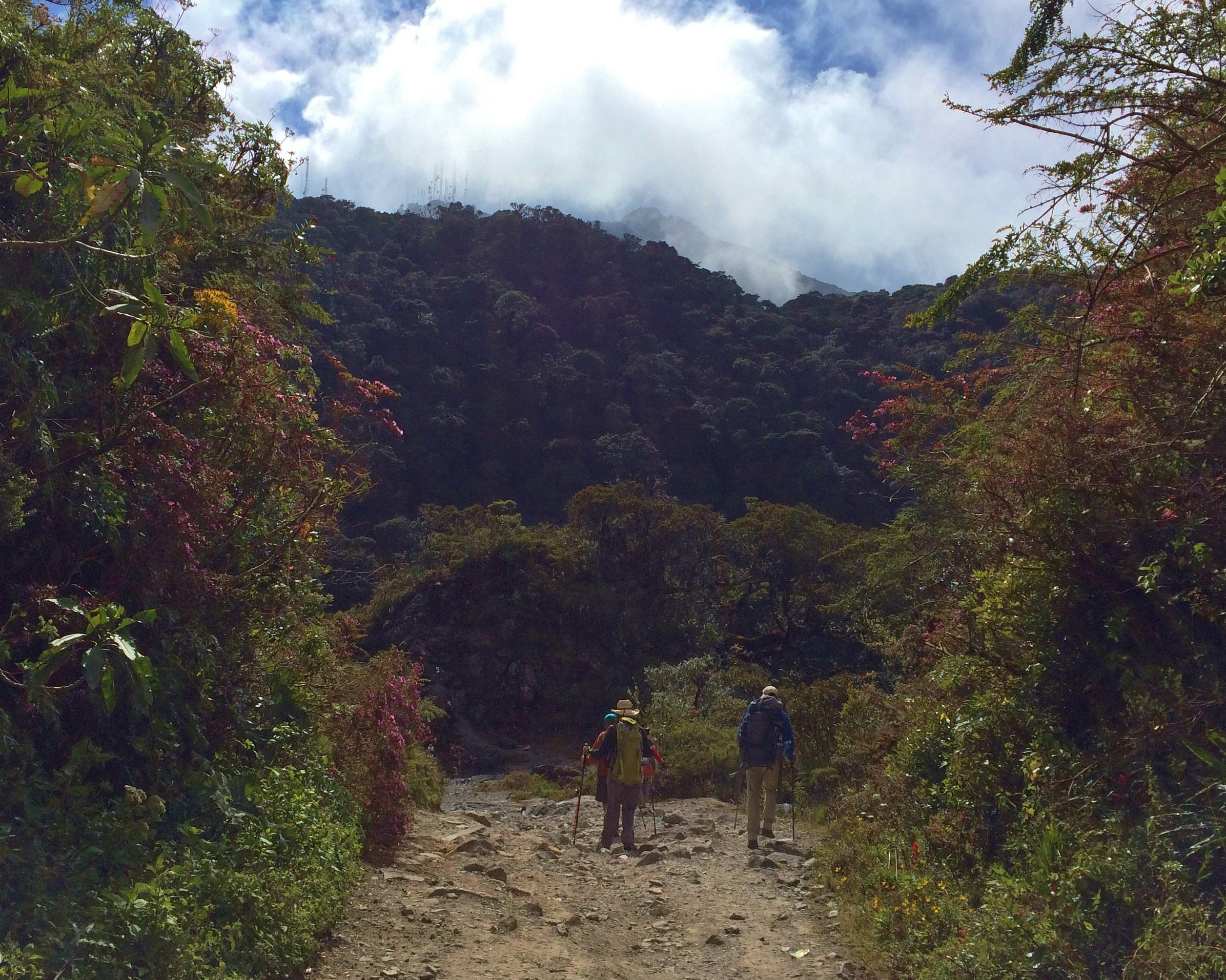 approach-1 Volcán Barú: Another tick off the bucket list! Panama The Great Outdoors