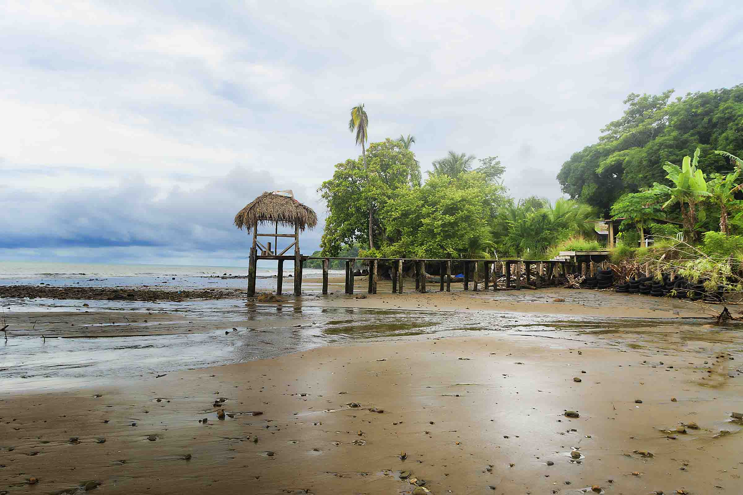 Hooked-on-Panama-Beach-2-1 Doggy Bliss at Hooked on Panama Panama Pets