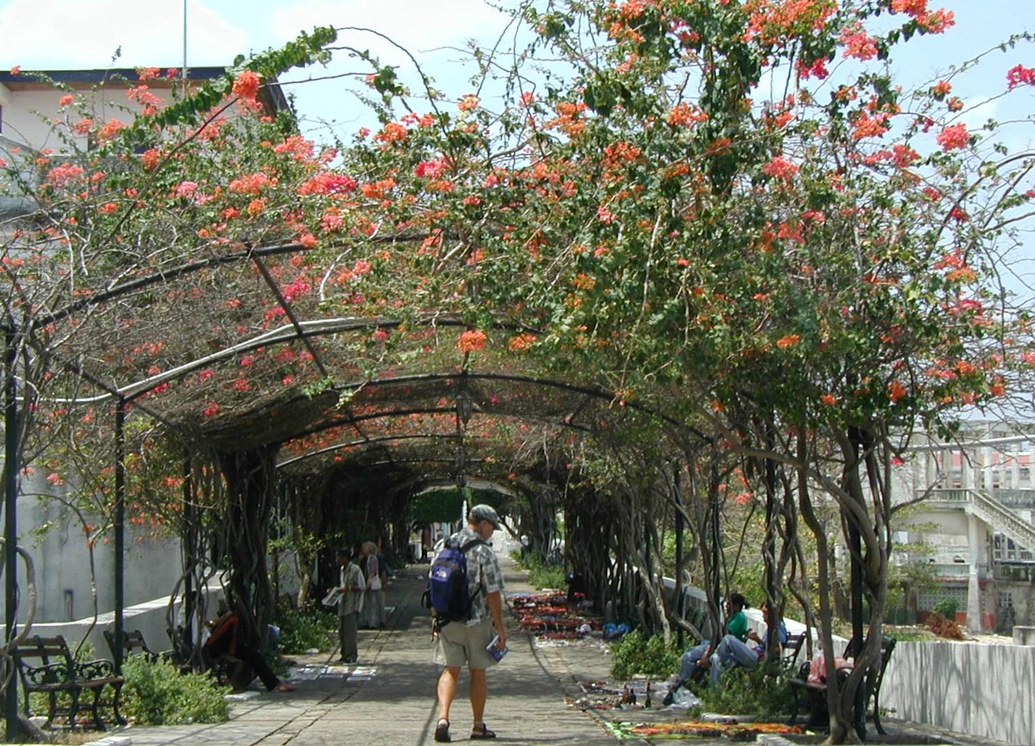 Casco-Viejo-Walkway-2004 Discovering Casco Viejo, Panama Panama Panama City
