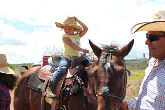 IMG_9633-300x200 The Boquete Equestrian Center Boquete Panama