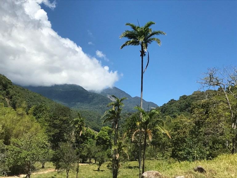 3Iy0gGhETt6TWnSmWFSfUQ-1024x768 Two Day Hikes in Chiriqui Province, Panama Chiriqui Hiking in Panama The Great Outdoors