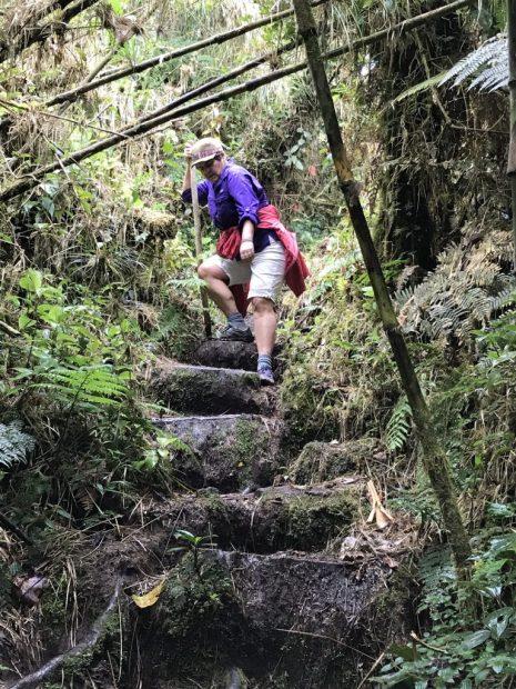 Q3FCoGDTrad3waLdYtR2Q-e1522014382230-768x1024 Hiking Panama's Amistad International Park Hiking in Panama Panama The Great Outdoors