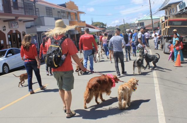 fullsizeoutput_d03-1024x674 Founders' Week in Boquete Town Boquete Panama
