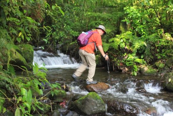 IMG_9890-1024x683 Panama's Sendero Los Quetzales Hiking in Panama Panama The Great Outdoors