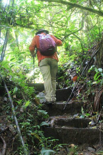 IMG_9894-e1536697078456-683x1024 Panama's Sendero Los Quetzales Hiking in Panama Panama The Great Outdoors