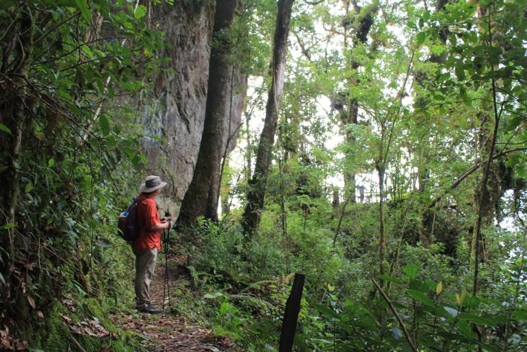 IMG_9904-1024x683 Panama's Sendero Los Quetzales Hiking in Panama Panama The Great Outdoors