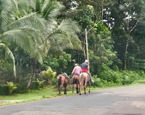fullsizeoutput_f44-1024x810 Punta Duarte - One Last Panama Road Trip! Azuero Peninsula Panama