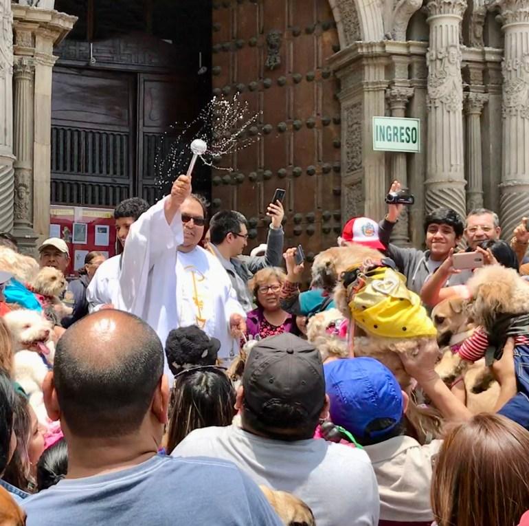 fullsizeoutput_1437-1024x1017 Peru Explorations: Lima Highlights Lima Peru
