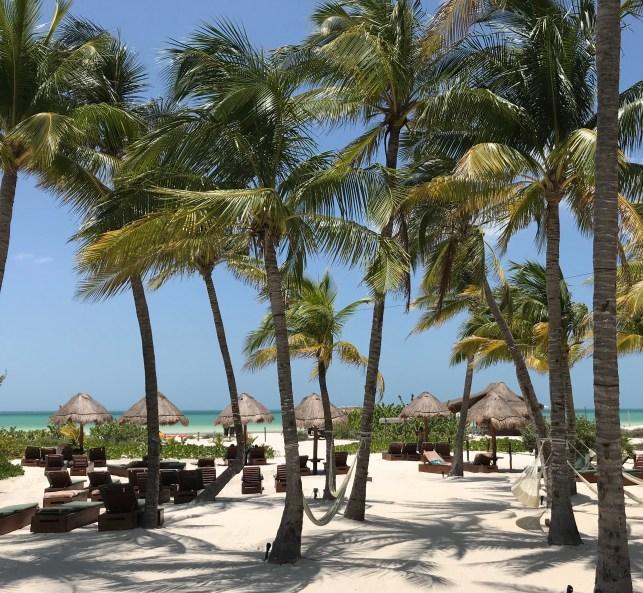 fullsizeoutput_1d96-1024x944 Isla Holbox, a Mexican Jewel Mexico