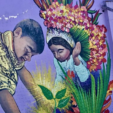 349E9BFB-9EDD-4B9A-9169-D67E31F54F11_1_201_a-scaled A Visit to a Colombian Flower Finca Colombia Medellin