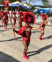 ADA30996-B9A7-4F58-BF22-5AB1932282E8-scaled Colombia's Carnival! Colombia