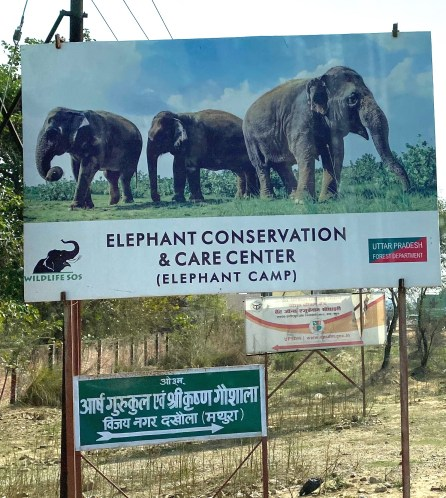 IMG_1453-For-Blog-ECCC-Sign-918x1024 Guest Post: The Elephants of India's Wildlife SOS India