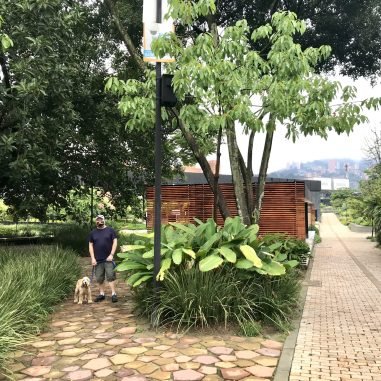 IMG_3855-1-scaled Walking in Medellín: Our Salvation in a Quarantine Colombia