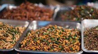 yummy, fried bugs. Food vendors cart, Ploenchit rd