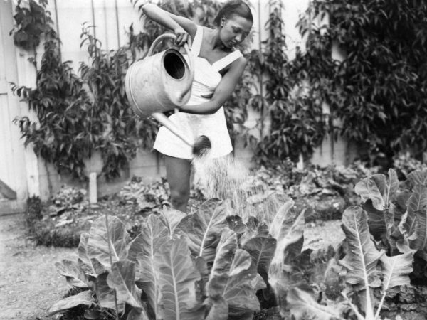 Friday's Inspiration: How To Tend To Your Garden (Community)