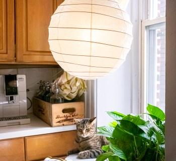 A High Low Kitchen Nook