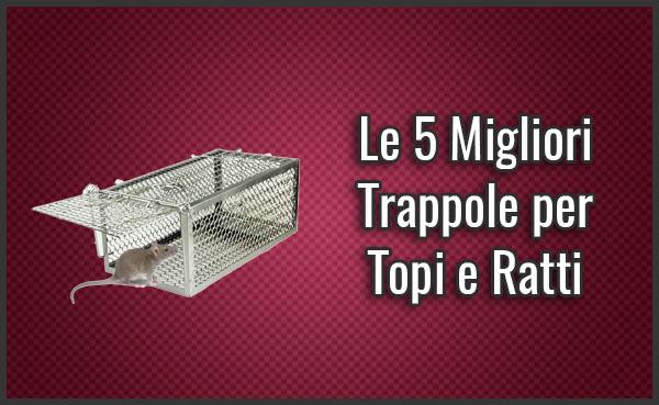 Le 5 Migliori Trappole Efficaci Per Topi Recensioni Set