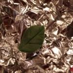 Rosenblatt-Veiner im Test