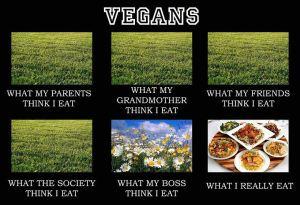 What people think vegans eat
