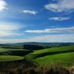 NZ 2013 – Día 7: Los Catlins I