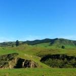 NZ-2013 Día 13. Reefton – Kaikoura