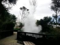 Parque público en Rotorua